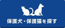 保護犬・保護猫を探す